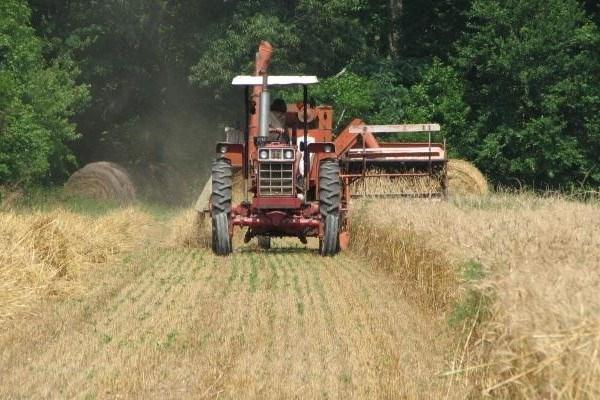 În Găgăuzia a demarat recoltarea cerealelor din grupul I