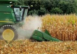 Prognozele SHS la recoltele de floarea-soarelui, porumb și sfeclă de zahăr