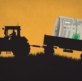 MAC-P anunță ultimul apel de granturi pentru crearea infrastructurii post-recoltare