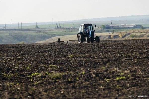 În 2015, agricultura Moldovei a suportat pierderi de peste cinci miliarde de lei