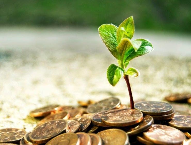 De ce fermierii și companiile mici au nevoie neapărat de un buget operațional