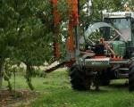 Maşină de curăţat pomii fructiferi care aduce economii de mii de lei