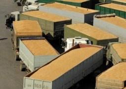Veşti bune: s-a spart monopolul de achiziţie de pe piața grâului