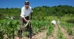 Agricultorii nu mai cred în promisiuni