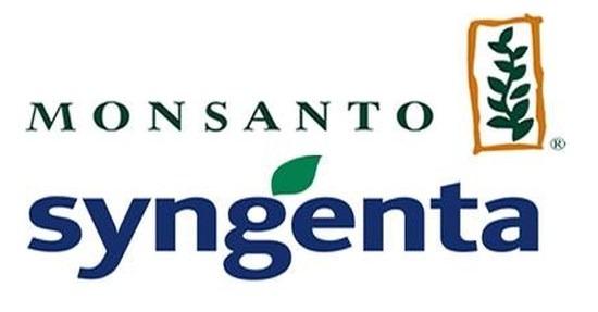Monsanto încearcă din nou să cumpere Syngenta