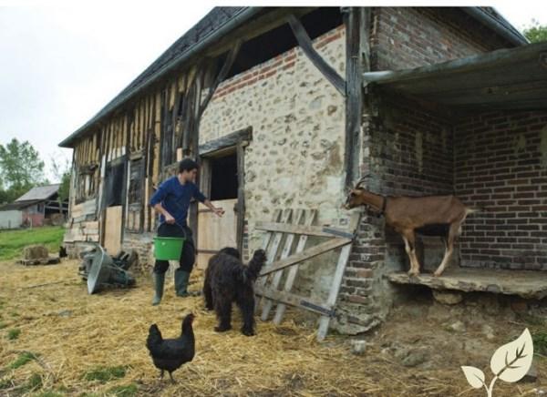 Cum o duc agricultorii din Franța? Iată ce subvenții încasează de la stat