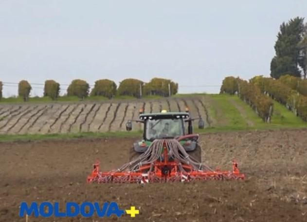 VIDEO. Muncesc din greu pentru a avea o afacere în Moldova