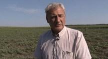 VIDEO. Afacerile cu harbuji – provocările producătorilor de la Glodeni