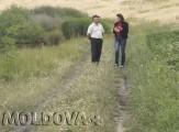 VIDEO. Legumele de la Zahorna, la mare căutare