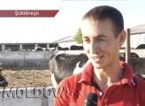 VIDEO. La doar 24 de ani, s-a apucat să-și facă o fermă ca în Europa