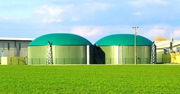 La Criuleni a fost dată în exploatare prima fabrică de producere a peleţilor din biomasă