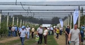 FOTO. Seminar pe tema pomiculturii la Glodeni. Bayer CropScience a organizat o demonstrație în livadă