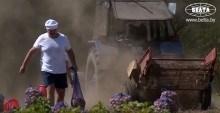VIDEO. Lukașenko a ieșit duminică la strâns cartofi