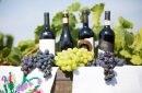 "Cele mai bune vinuri şi produse din Moldova prezentate la Iarmarocul ""Toamna la Moscova"""