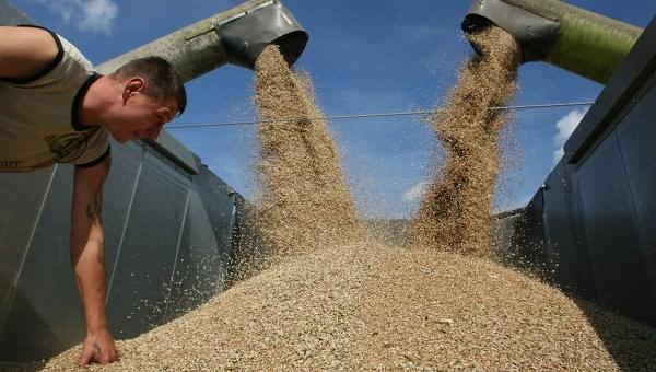 În Transnistria recolta de cereale a depășit indicii din anul trecut