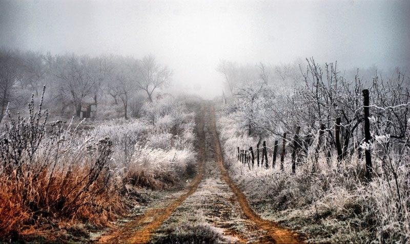 COD GALBEN de înghețuri la suprafața solului!