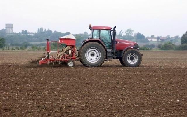 Lipsa de precipitaţii ar putea afecta recolta din 2016