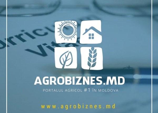 Portalul Agrobiznes.md angajează tineri cu profil jurnalistic, economic sau științe agricole