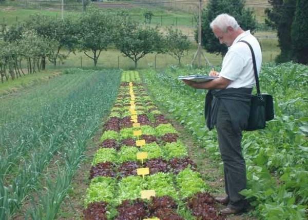 Va fi elaborat un registru al producătorilor horticoli