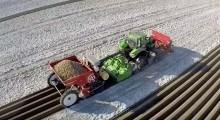 VIDEO. Tehnologii performante în agricultură: Cum se plantează cartofii în Olanda