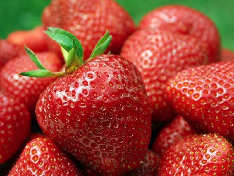 FOTO: produto.mercadolivre.com.br