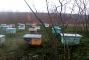 VIDEO. A fost reținută o grupare specializată în furtul tehnicii agricole și stupilor cu albine