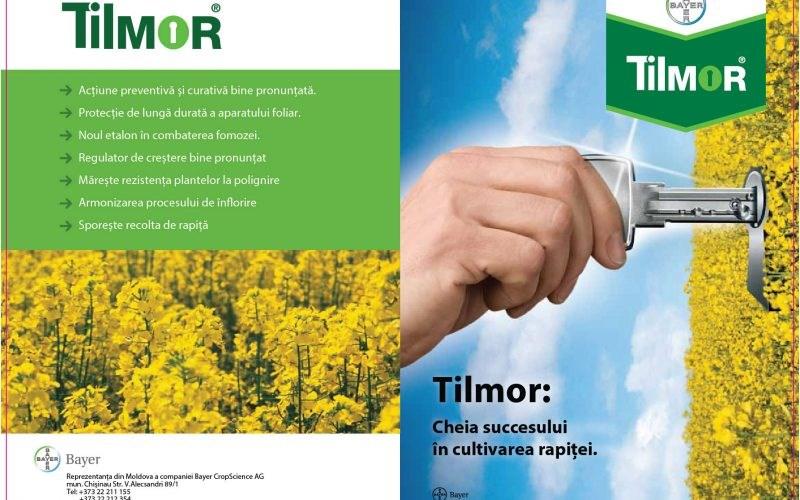 Tilmor: cheia succesului în cultivarea rapiței