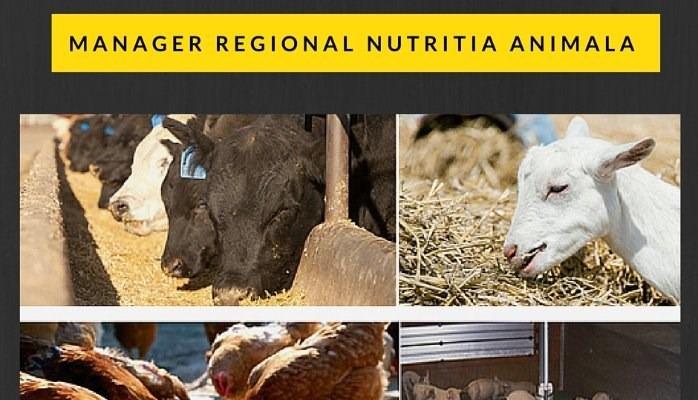 Companie internationala angajeaza manager nutritia animala