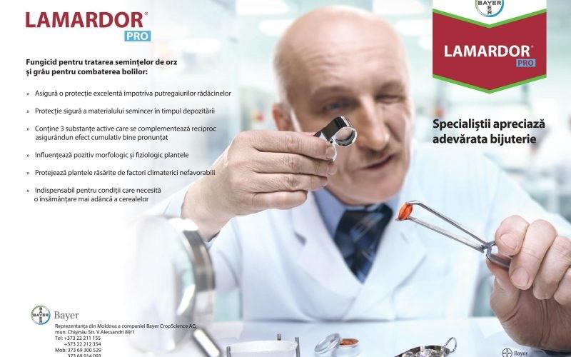 BAYER: Lamardor Pro – fungicid revoluționar pentru tratarea bolilor la semințele de grâu și orz