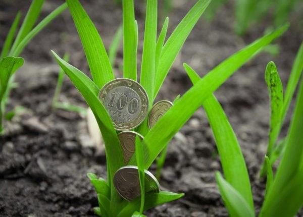 Statistica subvenţiilor: Pentru ce cheltuieli solicită agricultorii bani anul acesta de la AIPA