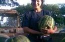 Povestea de succes a unei afaceri cu harbuji din localitatea Pohorniceni, Orhei