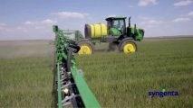Tratament Sămânță Cereale Syngenta Moldova
