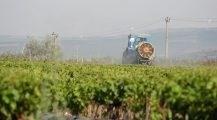 VIDEO. Spotul AIPA pentru viticultori și pomicultori