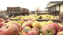 VIDEO. Stimularea investiţiilor pentru dezvoltarea infrastructurii postrecolare